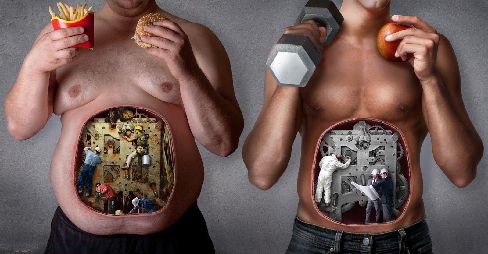 Метаболизм. Что, как ускорить, как похудеть, как улучшить