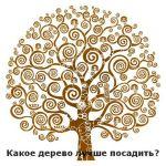 Какое дерево посадить? Пятерка деревьев!