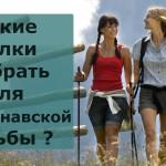 Какие палки выбрать для скандинавской ходьбы?