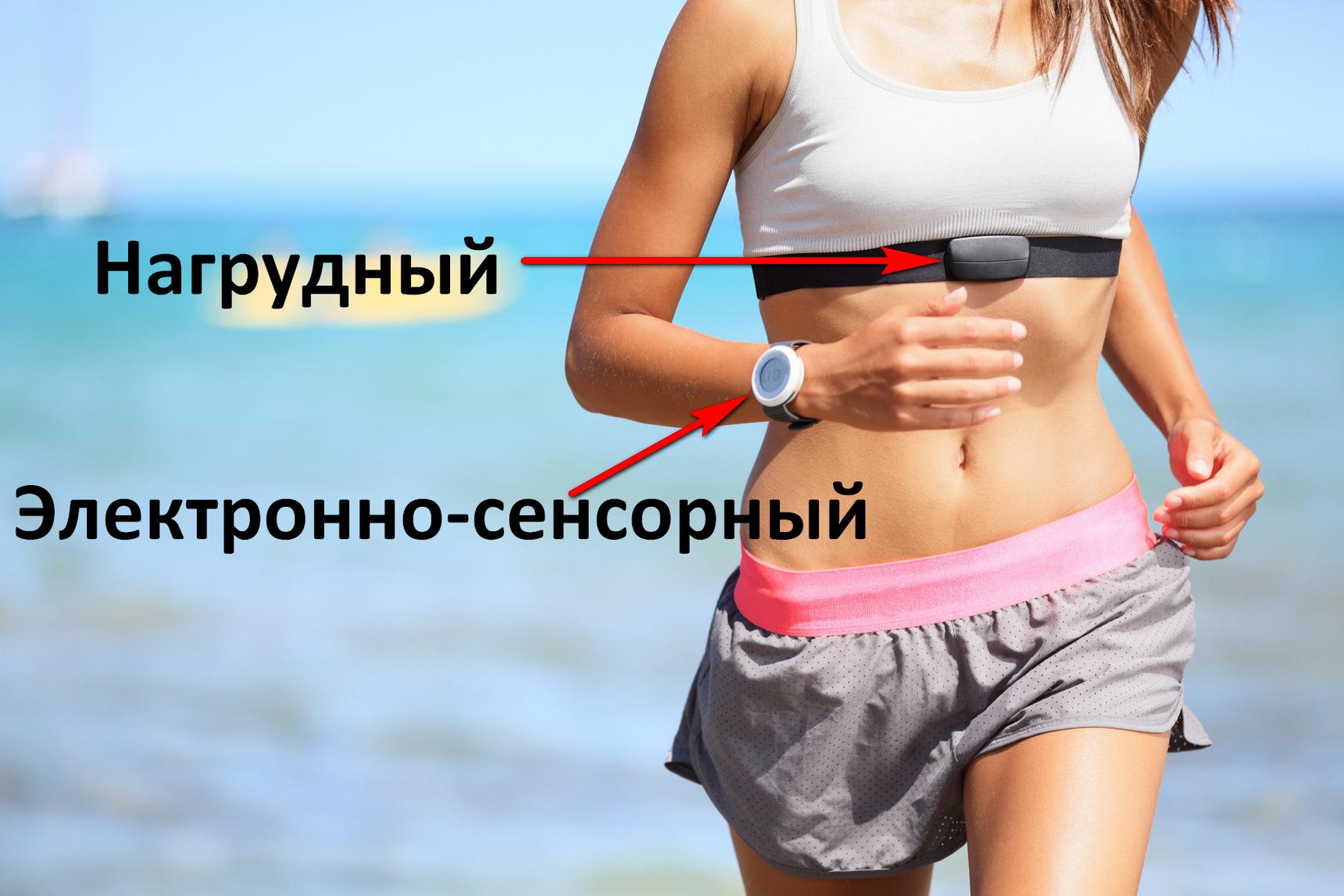 Пульсометр для бега. Обзор и выбор пульсометра