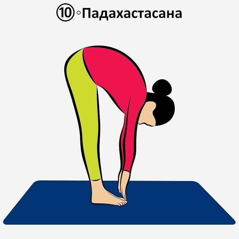 Комплекс утренних упражнений для йоги – Сурья Намаскар