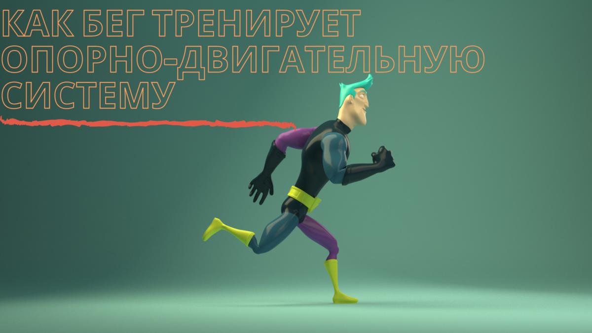 Как бег тренирует опорно-двигательную систему