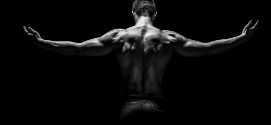 Упражнения для здорового позвоночника и осанки