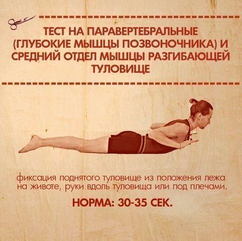 Тест на силу мышц