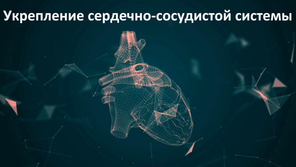 Виды кардионагрузкок при беге