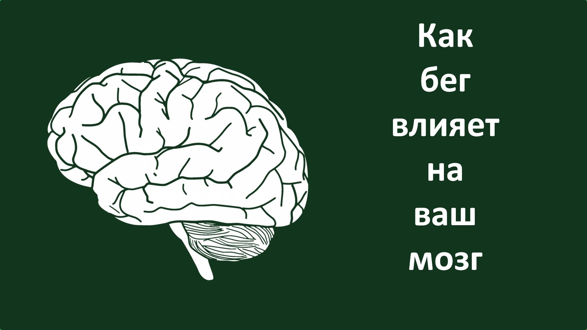 Как бег влияет на ваш мозг