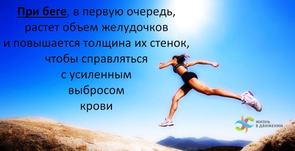Как бег улучшает кровообращение