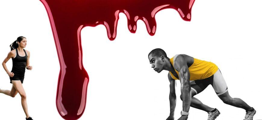 Бег и кровь. Что происходит во время бега. Ответы и вопросы