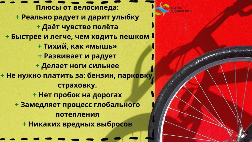 Как выбрать и настроить велосипед