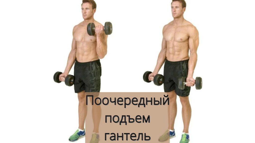 9 упражнений на 💪 руки с гантелями 🏠 дома