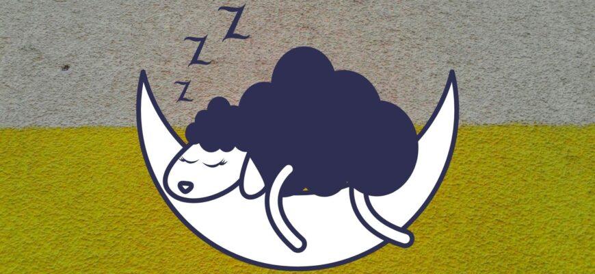 Методы помогающие улучшить 😴 качество сна